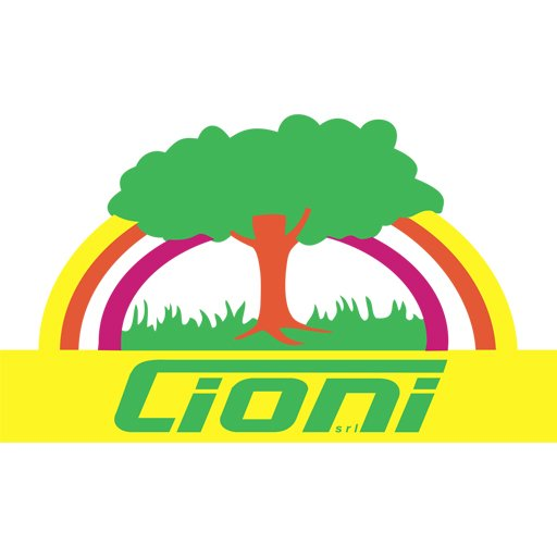 CIONI SRL